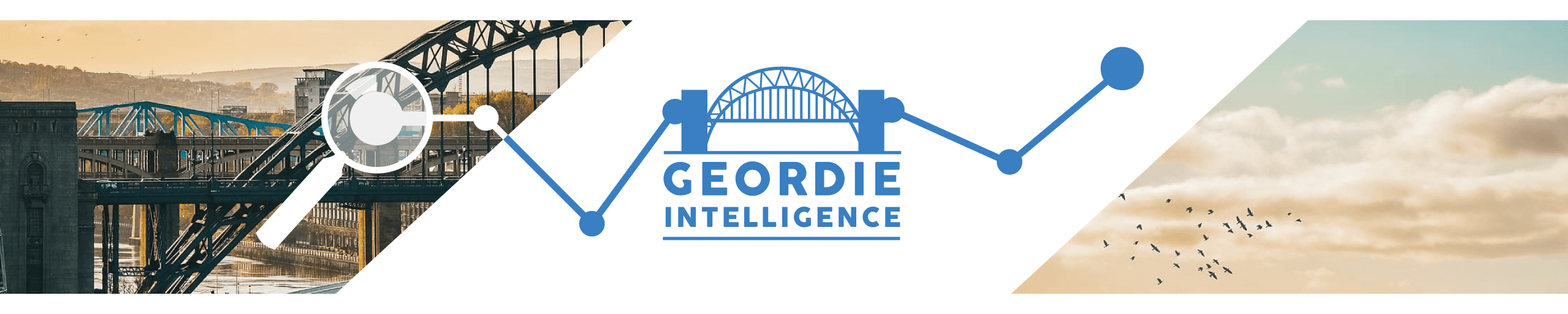 Geordie Intelligence